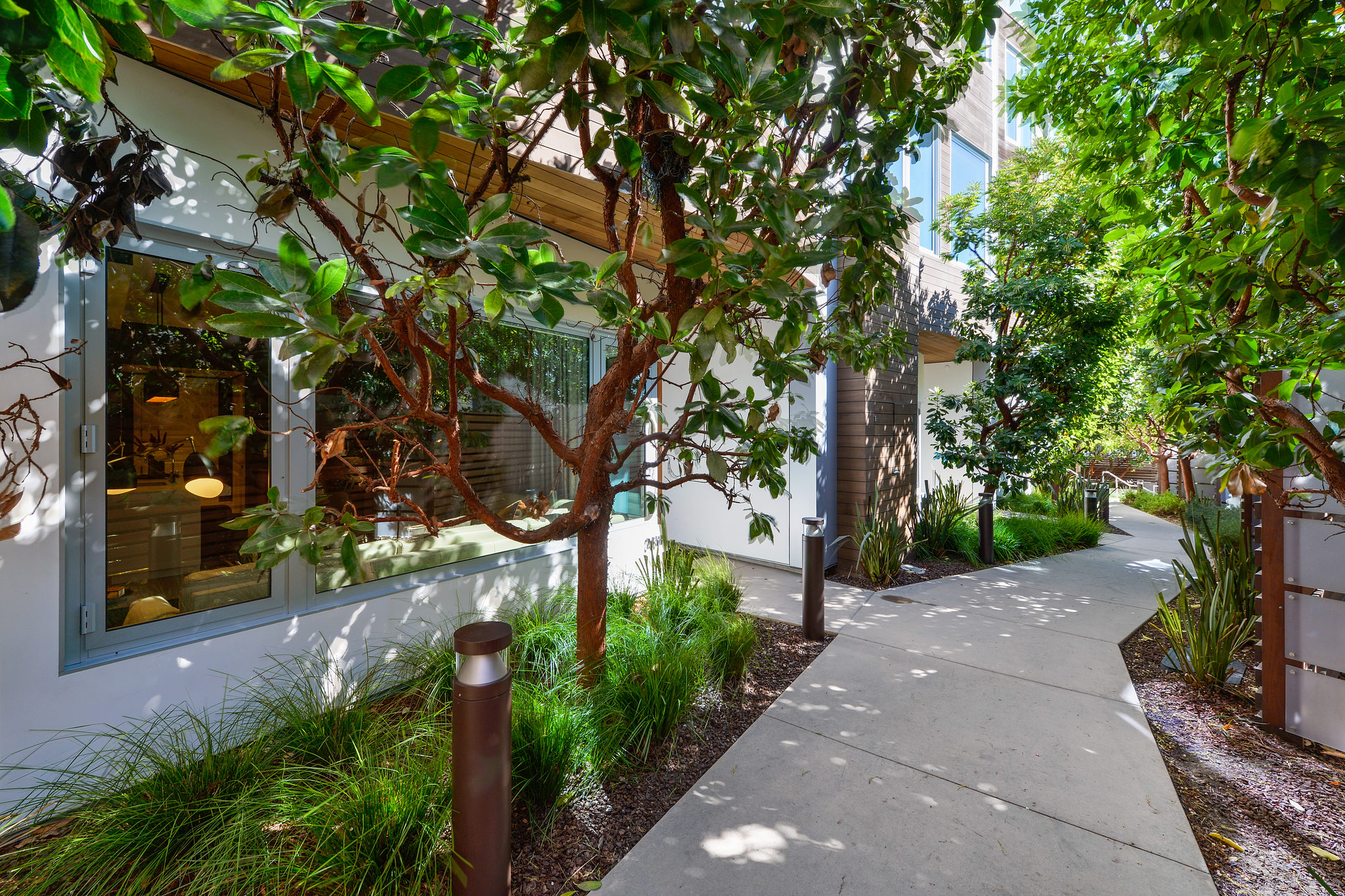 SF Luxury Home - Outside View