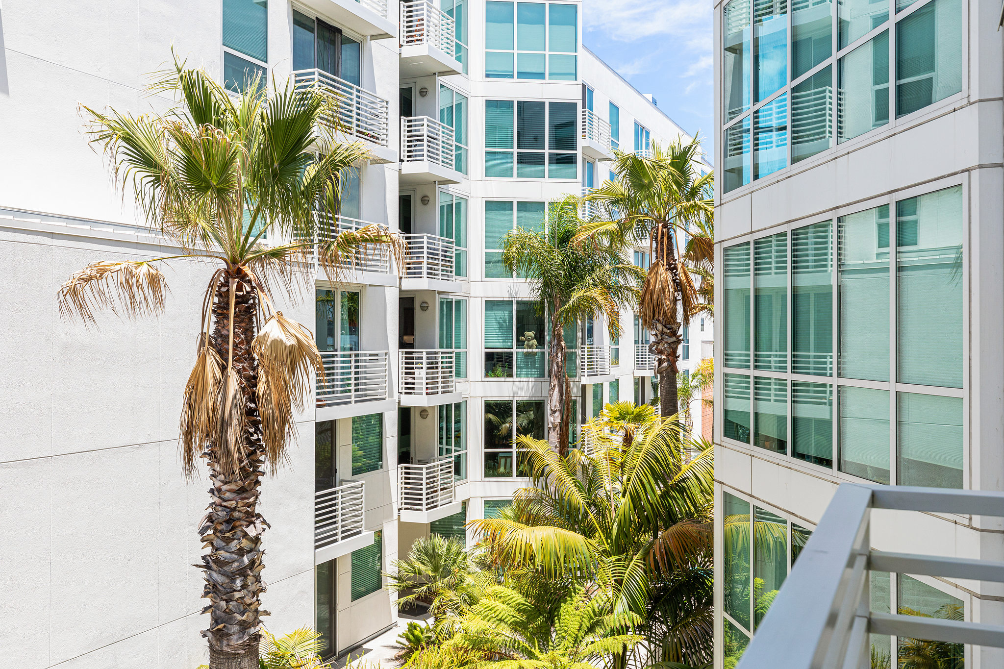 San Francisco Realty - Outside view of home with palm tree